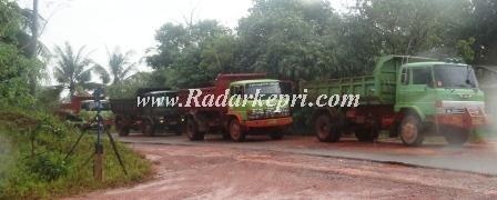 Dumptruk bebas melintas di jalan raya kota Tanjungpinang, Jumat 06 September 2013.