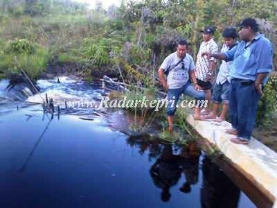 Inilah bendungan air senilai-Rp 7,8 M di-Senayang. Hingga saat ini pengolahan air ini belum memberikan kontribusi.