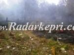 Salah satu lahan kebun warga yang terbakar di pulau Kundur.