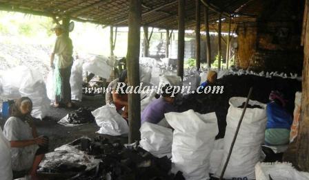 Aktfitas dapru arang di Kabupaten Lingga dengan bahan baku hutan bakau.